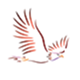 Profile picture of Condor-Affiliates-Review